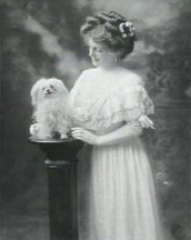Alice Lloyd, Vaudeville Entertainer